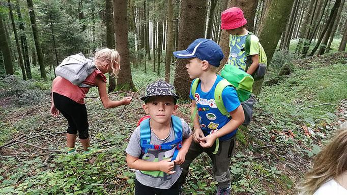 Auf Entdeckungstour im Wald © Juliane Leitner 2020
