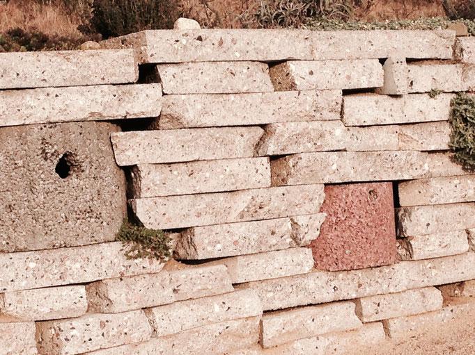 Die hier angelegte Trockenmauer stützt nicht nur das Erdreich gegen Abrutschen, sondern bietet durch die vielen Löcher und Spalten vielen Insekten und sogar Vögeln Unterschlupf.  Die Trockenmauer wurde auch von Schmetterlingen als Winterquartier angenomme