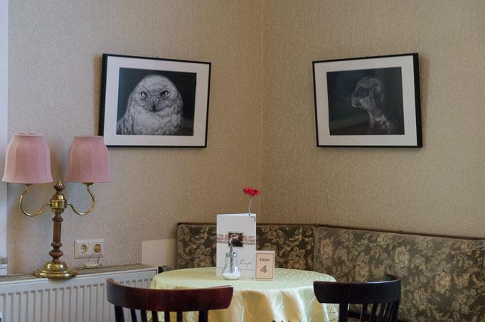"""""""Animalisches"""" - FOTOAUSSTELLUNG in Gotha mit Tierporträts im Café Suzette"""