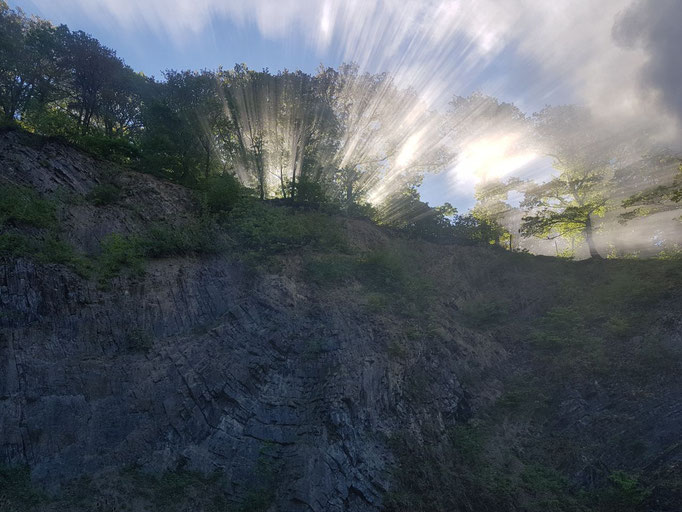 Sonnenaufgang in der Meilerwoche - Foto Marco Eitzenhöfer