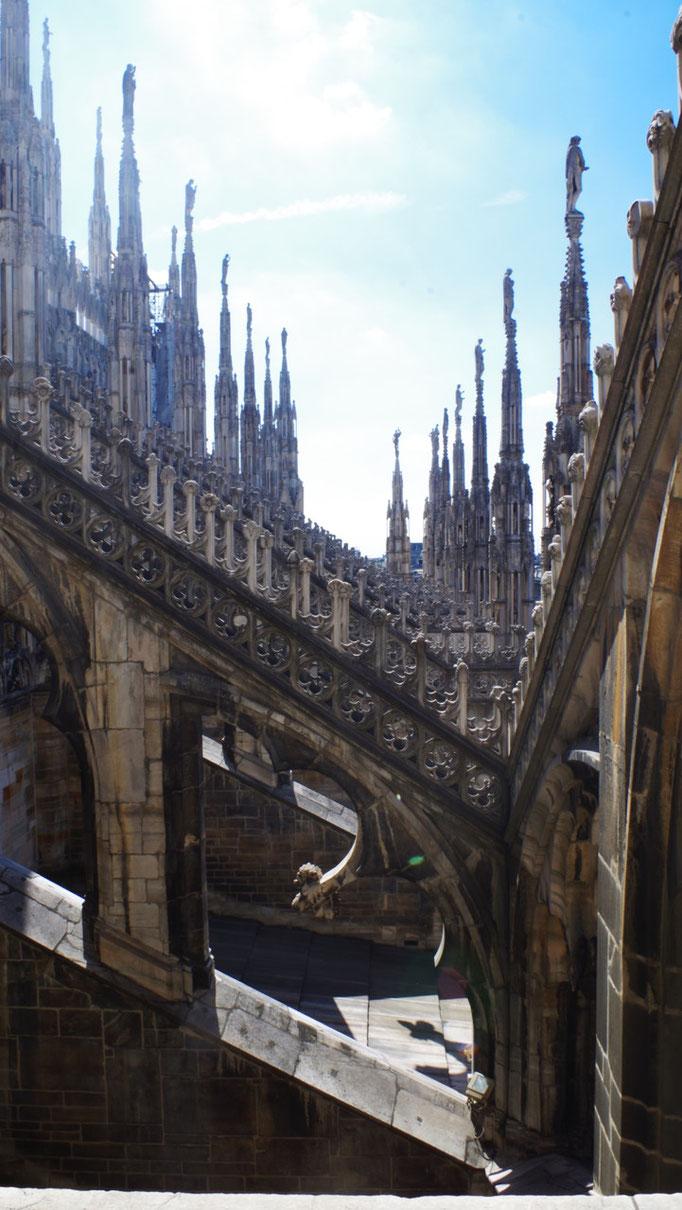 Toit du Duomo