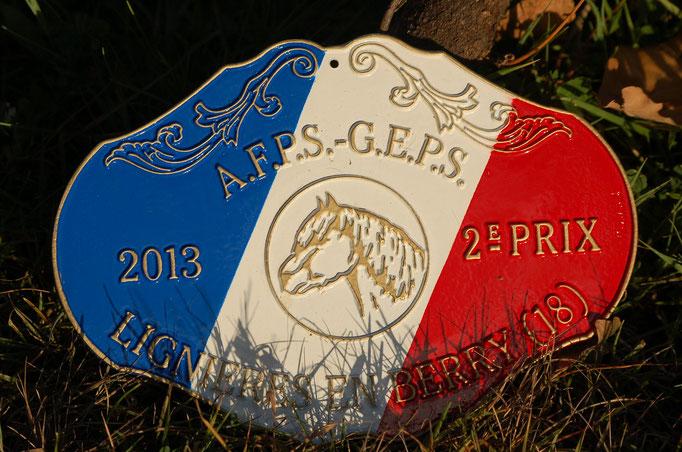 Championnats De France - Modèles et Allures 2013 - 2ème