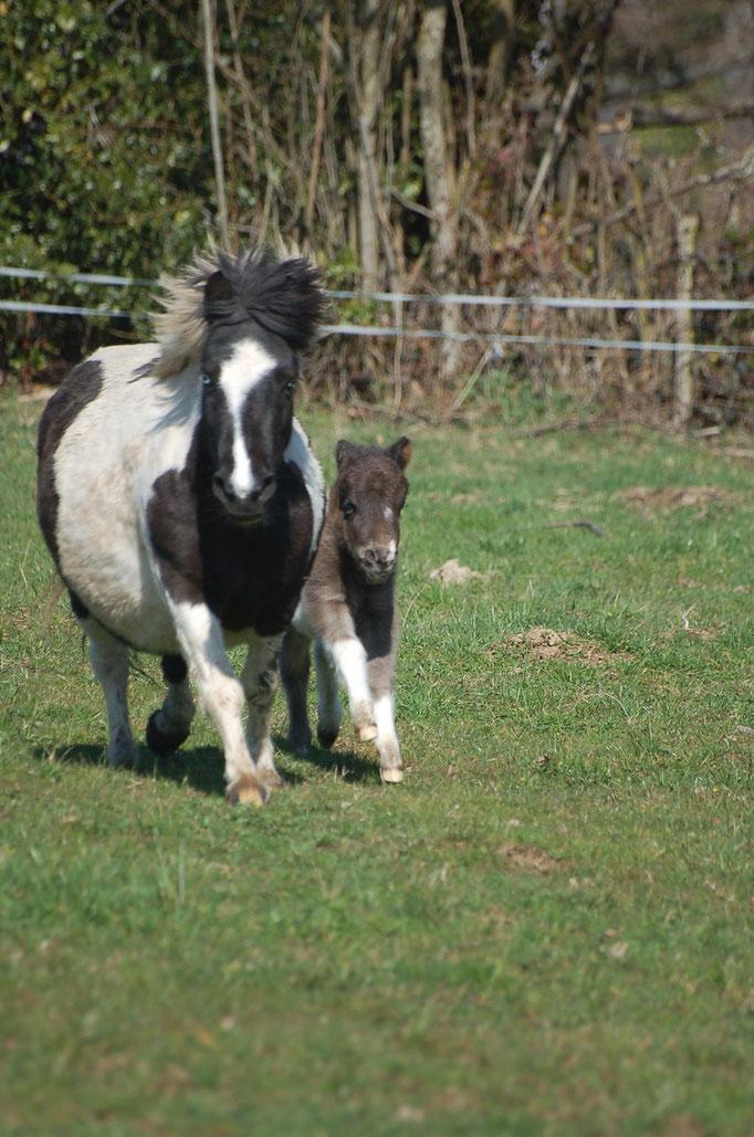 Felicia, 4 jours, avec sa maman Ansellia
