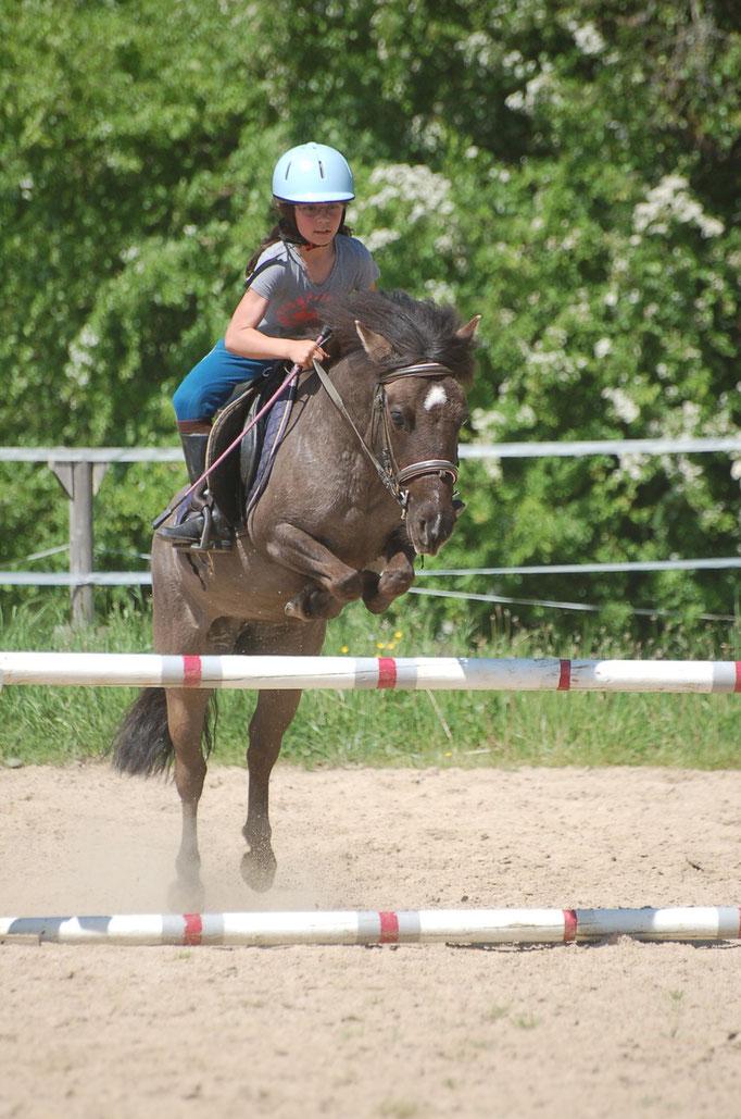 Cours d'obstacles au Centre équestre Chez Trillauds - mai 2015