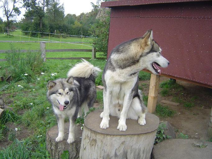 Denya und Kanee