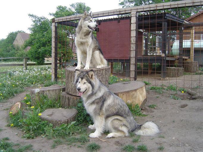 Bati und Kanee