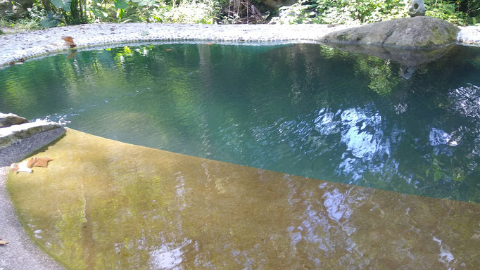 contemplación en el espejo del agua manantial sanadora / Besinnung im Spiegel des Heilquellwassers