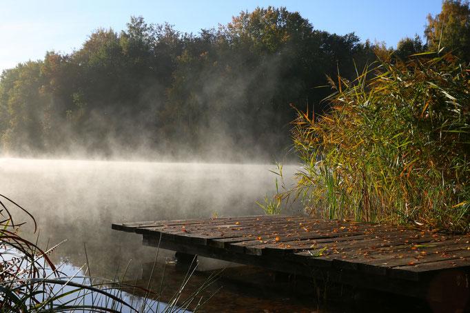 Lothar von Alm, Morgenstimmung am Flüggenhofsee