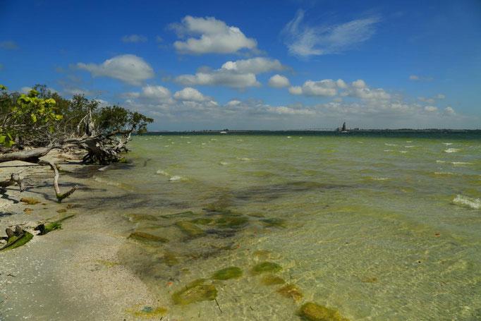 Lothar von Alm - Sanibel Island-Florida