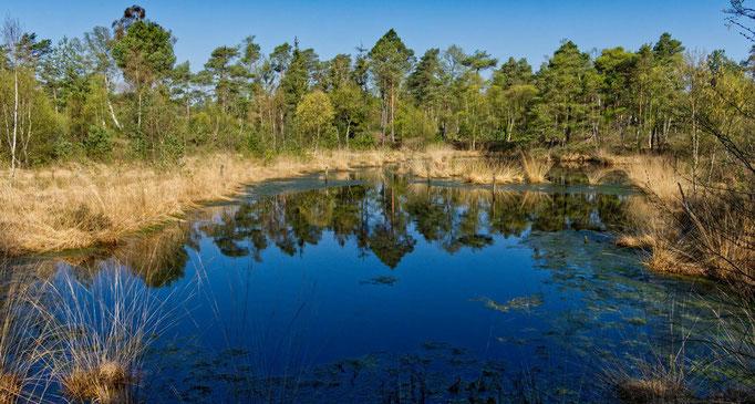 Uwe Eckardt, Grundloser See