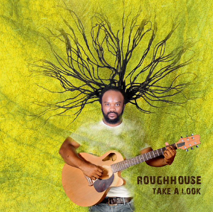 ROUGHHOUSE - TAKE A LOOK (LP, 2015)