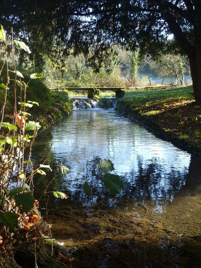 Canal de l'étang