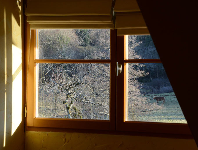 Fenêtre chambre 2e étage