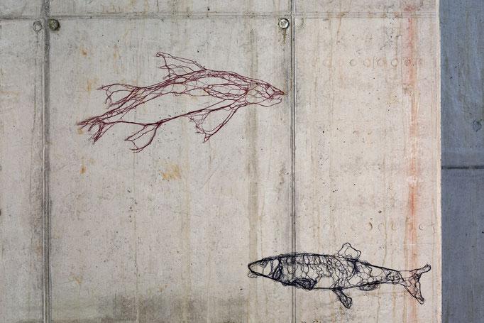 Fische, 2006, imprägnierte Nähseide auf Beton, ca. 40 x 70 cm
