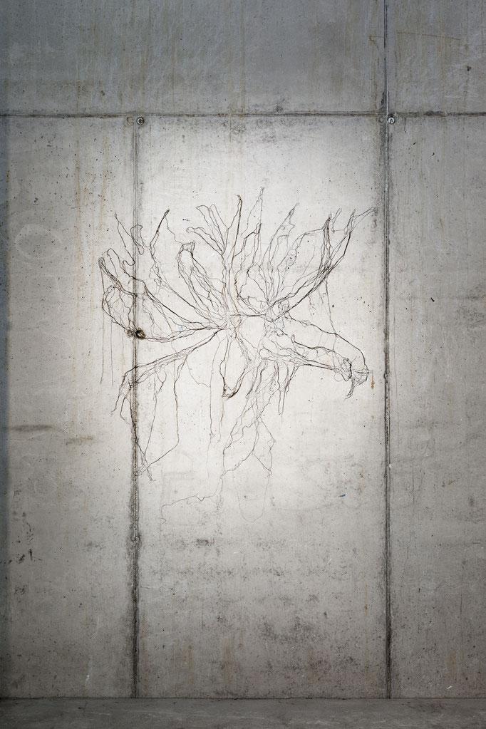 Ausstellungsansicht: Elchkopf, 2011, imprägnierte Nähseide auf Beton, ca. 160 x 155 cm