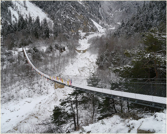 Bhutanbrücke Pfyn 08.02.2014