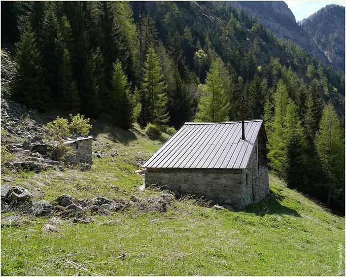 Alpe Bietschi Bietschtal 10.05.2014