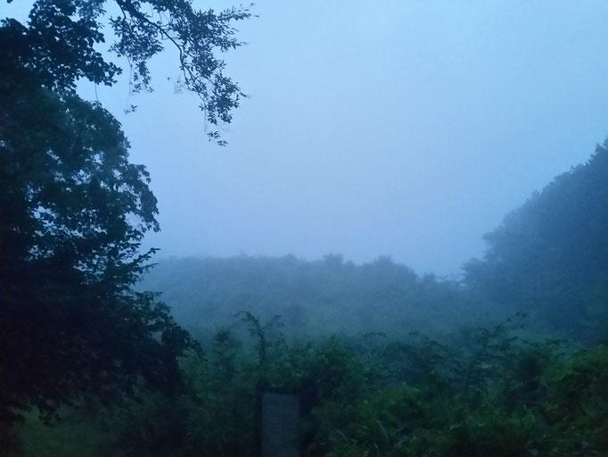 霧で真っ白な丸火自然公園