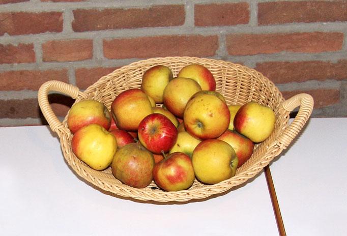 Frisches Obst für Zwischendurch