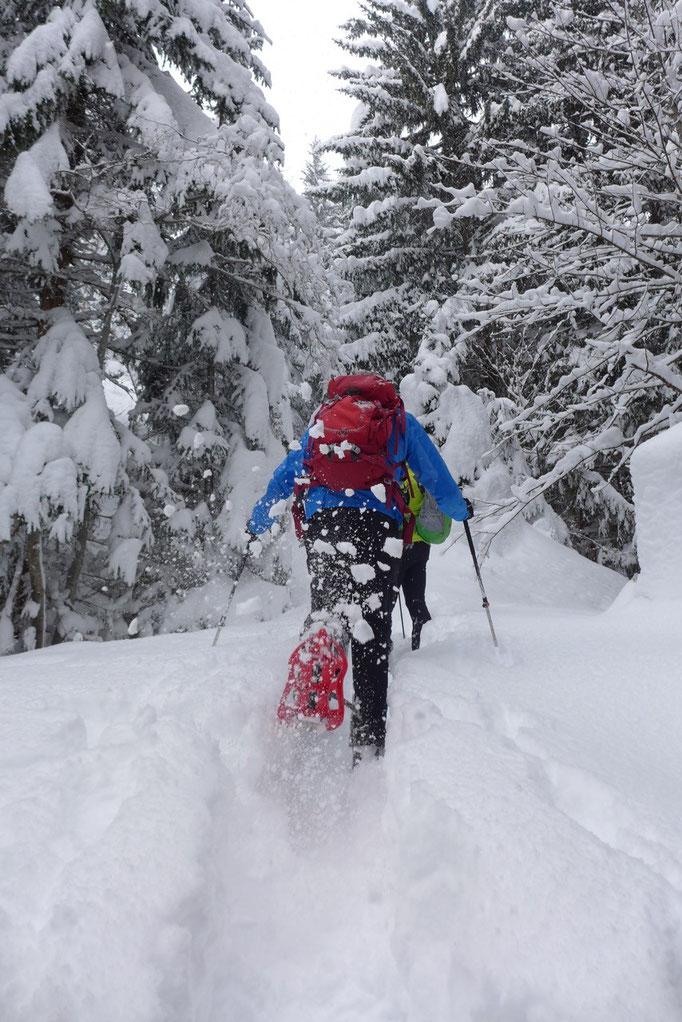 Schneeschuhwandern in Leogang