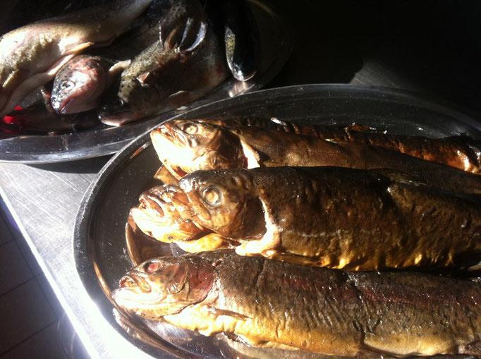 frischer Fisch im Goldenen Stern Velten