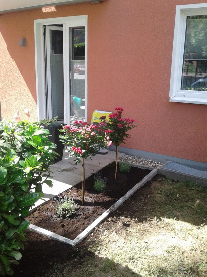 Gartengestaltung Beispiele vom Heinzelmann