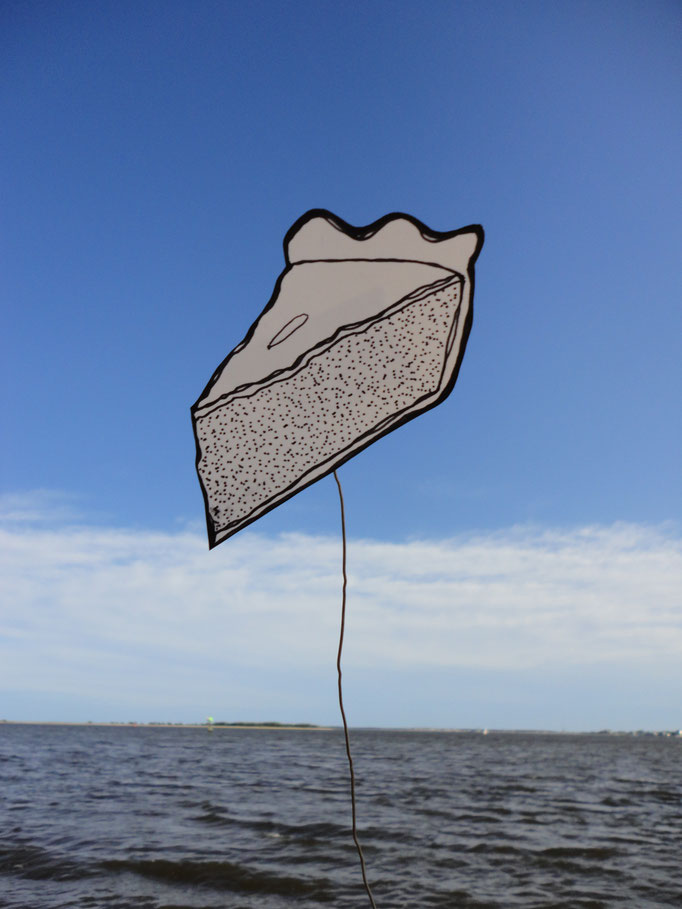 A Slice of Pie in the Sky, drawing on wire and photography, 2013