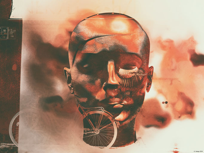 The head and the bicycle