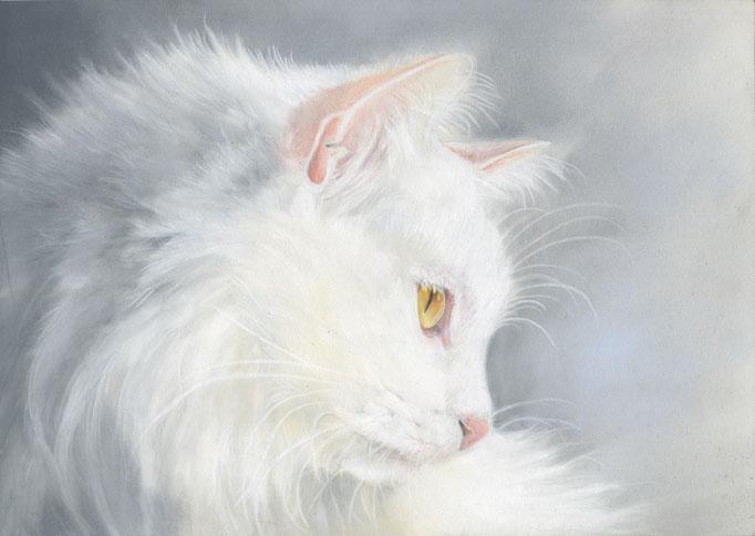 Pastell, 24x32cm, Ref. Foto free