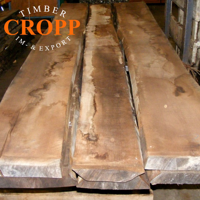 Our strength: Exotic and rare timber - Edelholz Großhandel Hamburg
