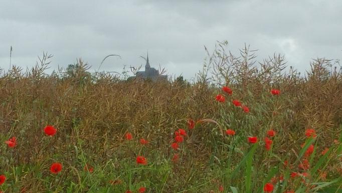 Mont Saint Michel. Bretagne Tagesausflüge Maison Dodo