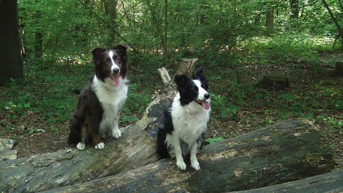 Mit meiner Freundin Stella in Hamm-Berge