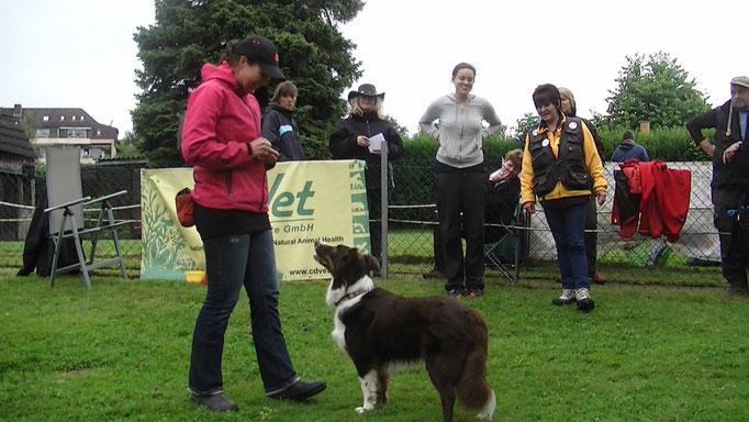 Mit Karin Stegmeiyer bei Study Dogs