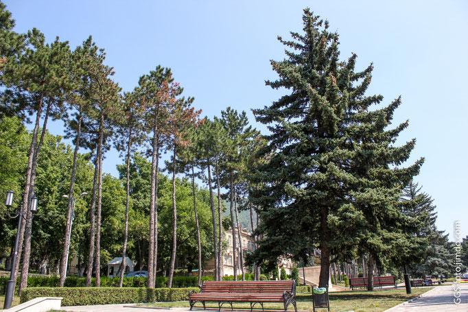 Россия,Ставропольский край, г.Пятигорск.