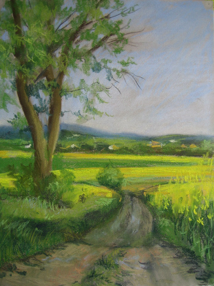 Chemin pastel