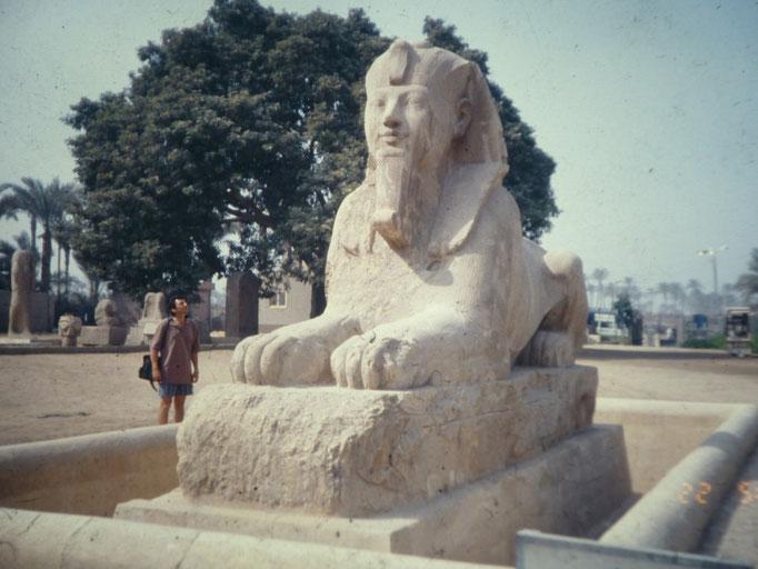 La esfinge de alabastro en Saqqara con la imagen de Amenhotep III