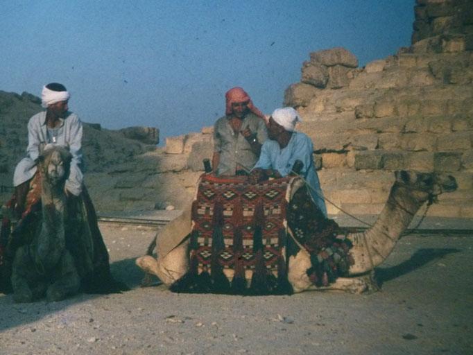 Junto a los camelleros de Giza,El Cairo.