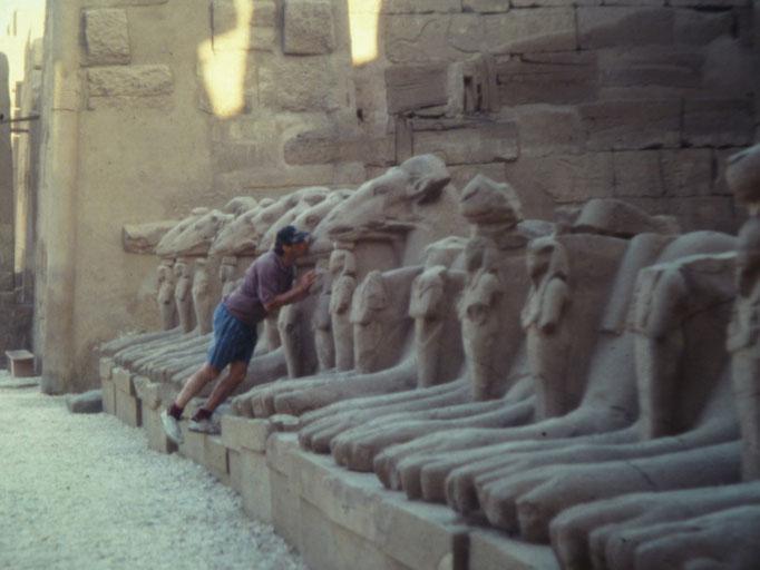 Gran patio del templo de Karnak y las esfinges de Amon como carnero.