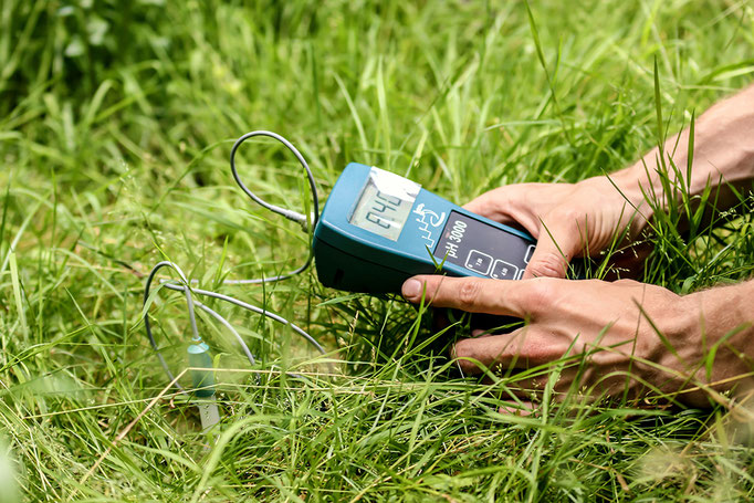 Bodenuntersuchung zur Ermittlung der Bodenwerte