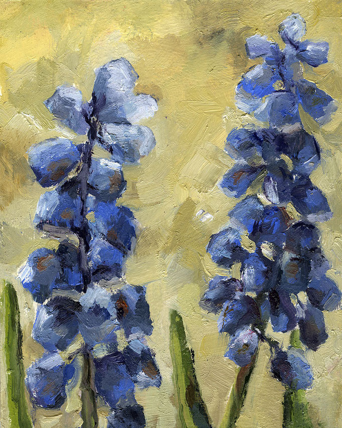 "Muscari twosome, 8""x 12"""