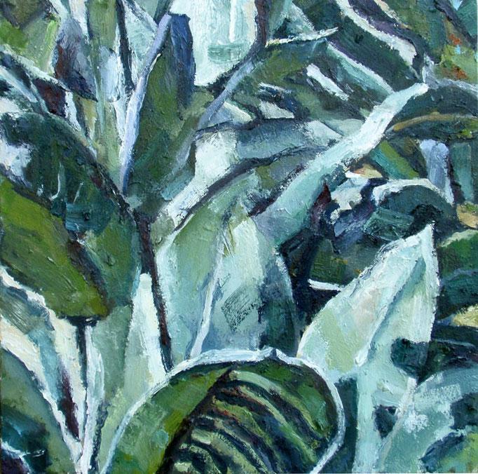 Velvet plant, oil on canvas, 20x20