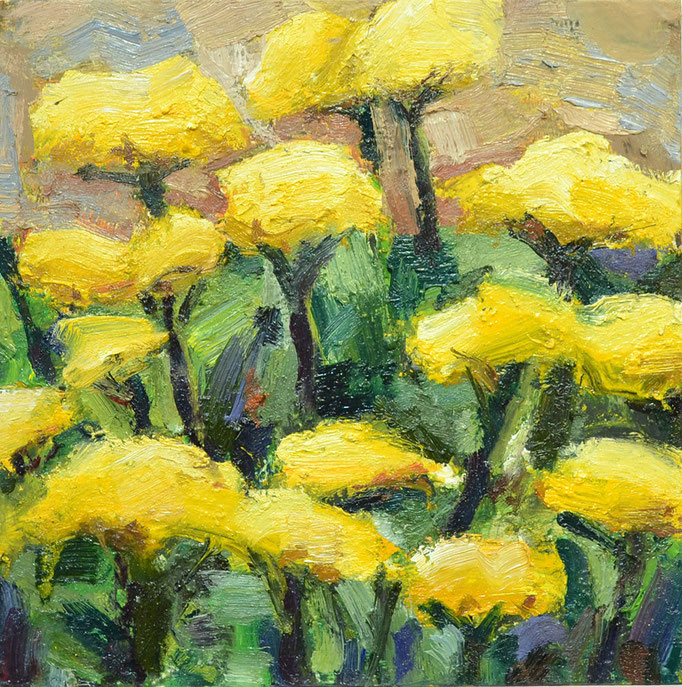 Yarrow, oil on board, 8x8