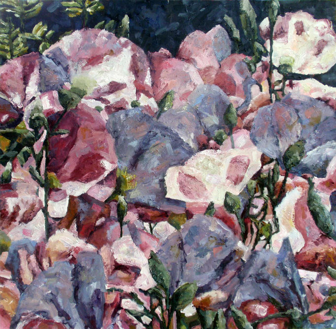 Prim Rose, oil on canvas, 36 x 36