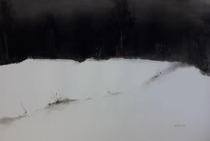 48 Aquarell 35 x 54 cm
