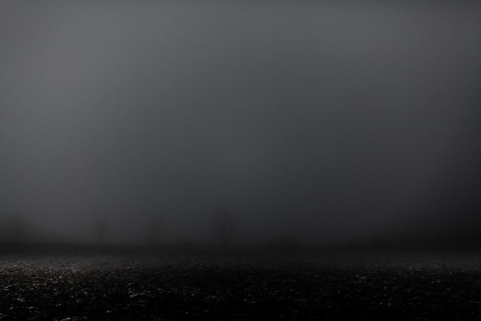 Michael Bennoun - brumes - mists
