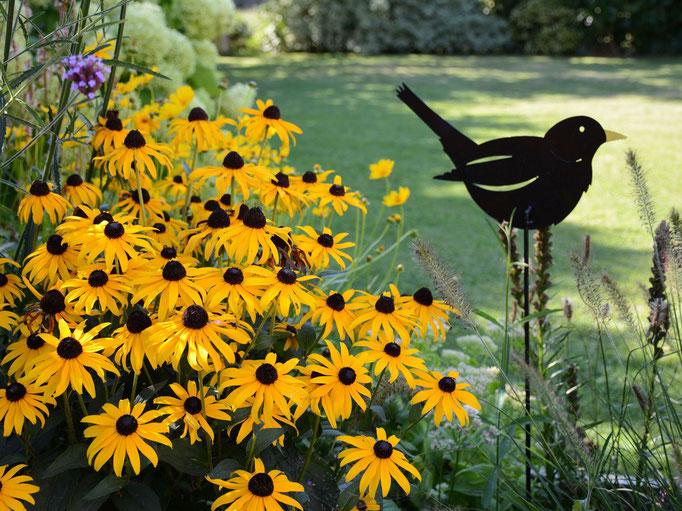 Le jardin, refuge pour les oiseaux