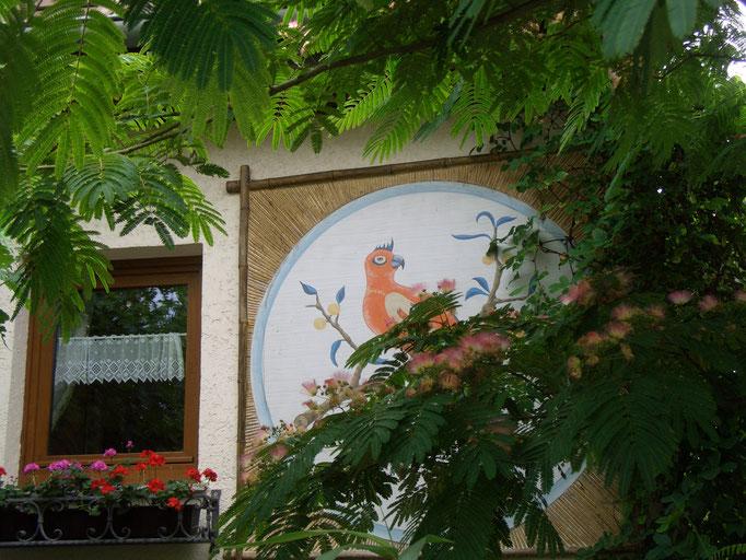Blüte Albizia julibrissin mit Wandbild