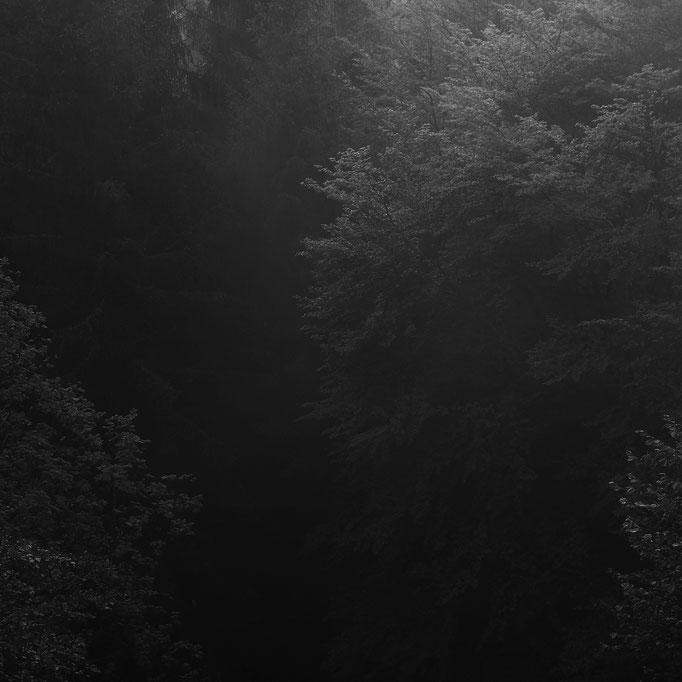 Thomashütte, Schutzhütte unterhalb des Kandelgipfels mit Blick auf's Glottertal