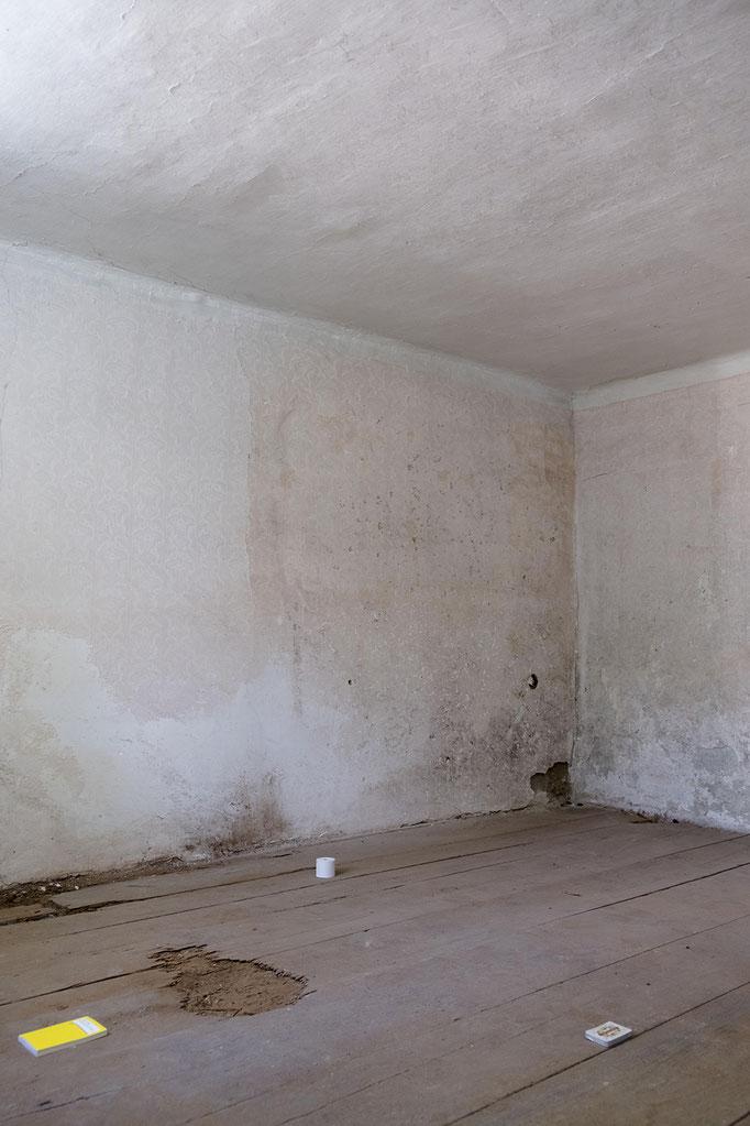 Plymouth Rock / Mitchell Anderson, 2020, Installation view © Haus Wien, photo: Jacqueline Neubauer