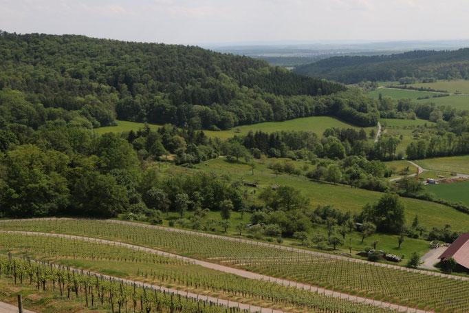 Blick über das Kirbachtal in Richtung Großsachsenheim